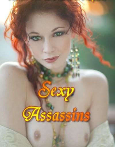 Sexy Assassins (2012)